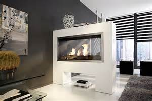 Double Sided Fireplaces Gas by Elektrokamin Elektro Kamin
