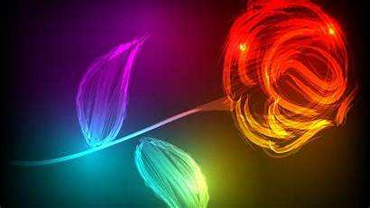 Rose Neon Colors 3d Wallpapers Colorful Graphics
