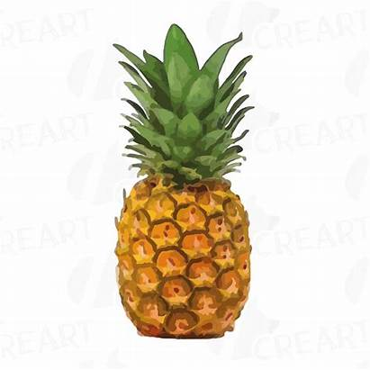 Clipart Pineapple Pdf Watercolor Printable Ananas Clip