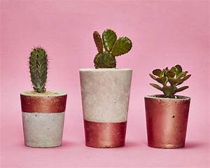 copper concrete plant pot with cactus or succulent by hi ...