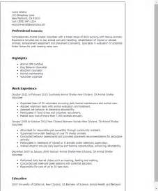 volunteer customer service resume professional animal shelter volunteer templates to showcase your talent myperfectresume