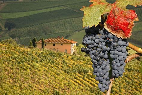 best wineries in chianti umbria vs tuscany which region should you travel to