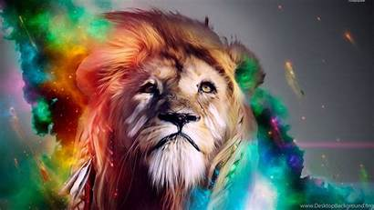 Lion Colorful Wallpapers Digital Desktop Background