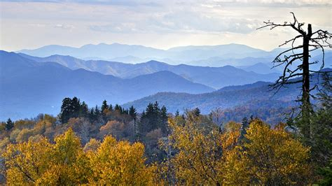 Appalachian Mountains Fall Iphone Wallpaper by Great Smoky Mountains National Park Guide Blue Ridge