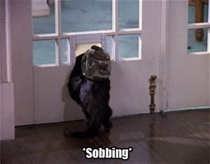 Sobbing Sabrina The Teenage Witch GIF - Find & Share on GIPHY