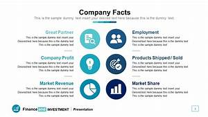 Company Facts Sheet Presentation