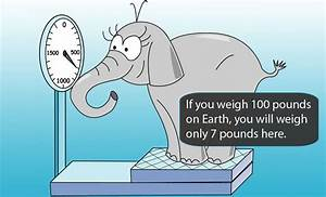 cartoon elephant stands on scale, looking happy.