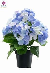 Hortensie Im Topf : kunstblumen hortensien in blau wei 36cm getopft ~ Eleganceandgraceweddings.com Haus und Dekorationen