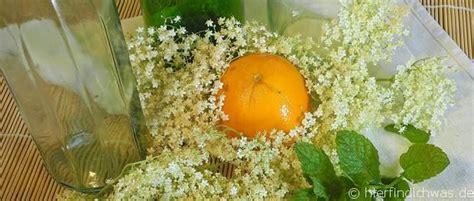 holunderbluetensirup orange minze selbst machen rezept