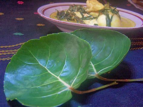 dapur bunda inong gulai telur tahu daun mangkokantapak leman