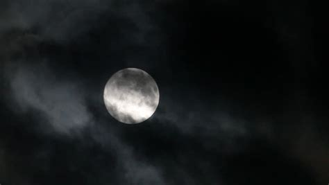 moon on cloudy with willow tree leaves blowing