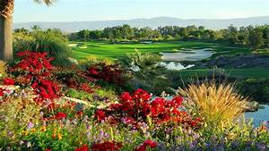 Golf Course Full HD Wallpaper and Background Image ...