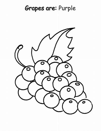 Coloring Purple Grapes Pages Preschool Draw Printable