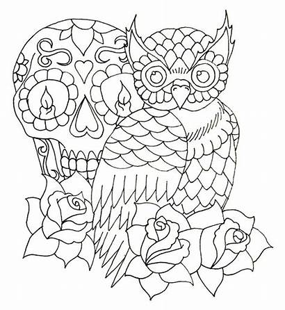 Owl Tattoo Random Outline Designs Tattoos Skull