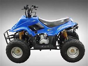 26 Chinese Atv Wiring Diagram 50cc