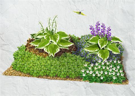 Pflanzen Wählen & Beet Gestalten