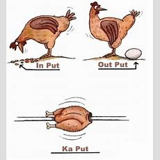 Input Output Kaput  Picture Of The Day  Funny Chicken