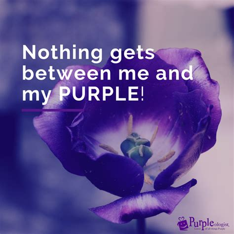 quotes from the color purple 9 purple quotes to make you smile purpleologist