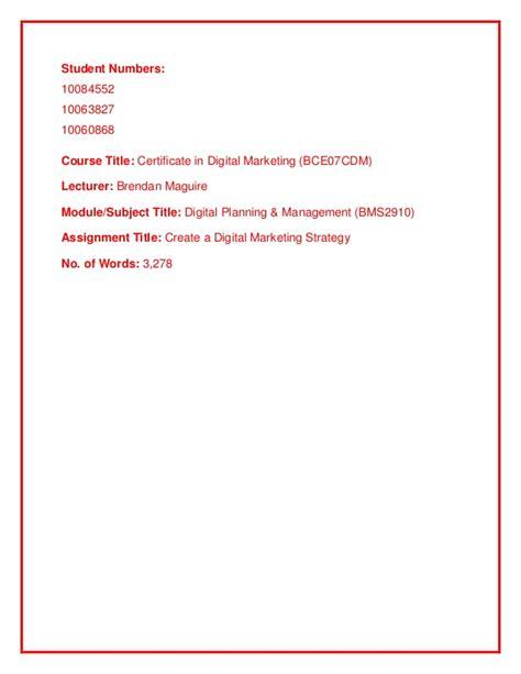 digital marketing management certificate digital marketing strategy project