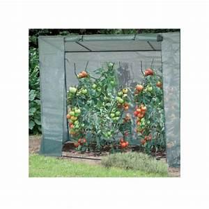 Serre Pour Plante : serre de culture pour tomates intermas celloplast ~ Premium-room.com Idées de Décoration