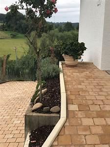 Treppen Für Wenig Platz : nur wenig platz im vorgarten reicht das f r einen kugelahorn fragen bilder pflanz und ~ Sanjose-hotels-ca.com Haus und Dekorationen