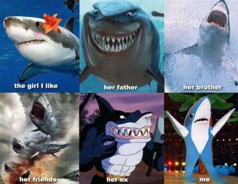 funny shark week memes barnorama