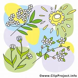 Bilder Blumen Kostenlos Downloaden : blumen fruehling cliparts kostenlos ~ Frokenaadalensverden.com Haus und Dekorationen
