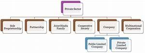 Difference Between Public Sector and Private Sector (with ...