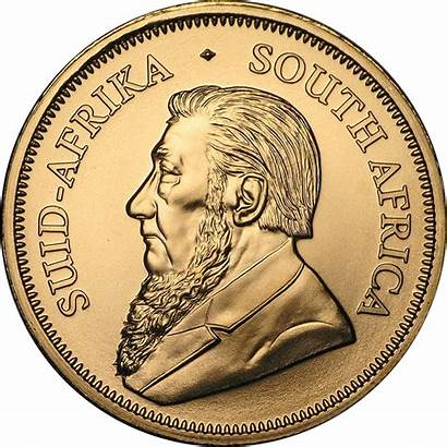 South Gold African Krugerrand Coin Coins 10oz