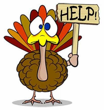 Turkey Thanksgiving Gobble Tom Thursday Help Beach