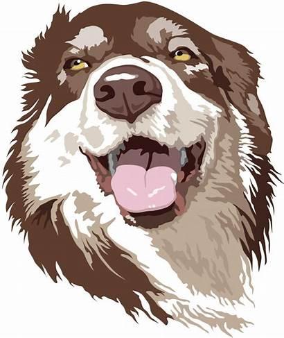 Sandrine Educ Canine Partenariats Propose