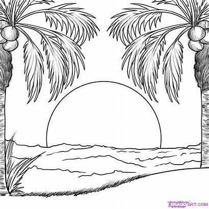Drawing Sunset Easy Tree Palm Coloring Beach