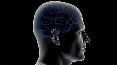 Addiction Scientist Trust Myth Magazine Medium