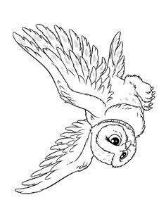 Oil Pastel Owl Art Lesson | Harry potter coloring pages, Harry potter colors, Harry potter owl