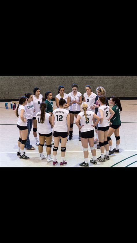 sac state womens volleyball club school sports team
