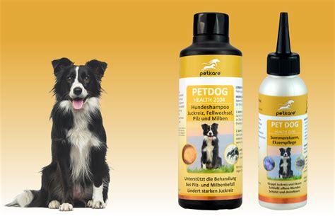 shampoo und ekzempflege bei dermatitis und juckreiz beim hund