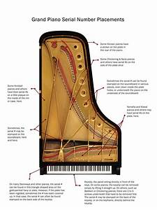 How To Find The Serial Number On Any Piano  With Pictures