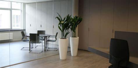 stores de bureau plantes d 39 intérieur co bureau