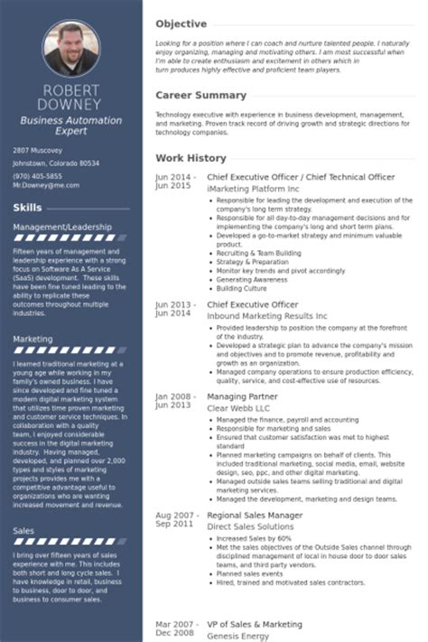 chief executive officer resume sles visualcv resume