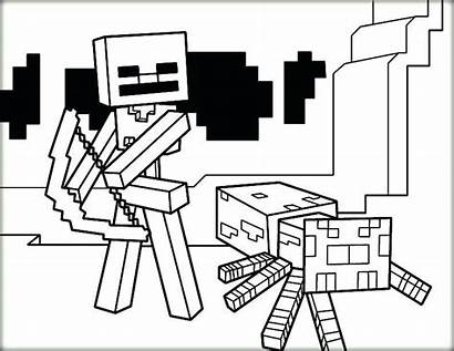 Minecraft Coloring Wither Pages Skeleton Spider Herobrine
