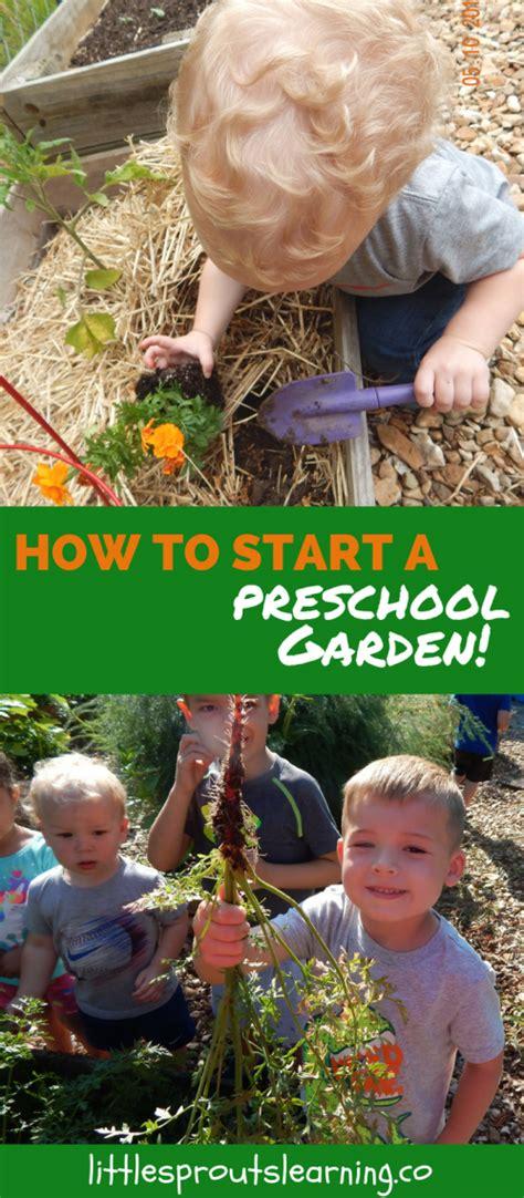 how to start a preschool garden 952 | How to Start a Preschool Garden