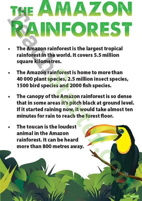 amazon rainforest fact sheet teaching resource teach starter