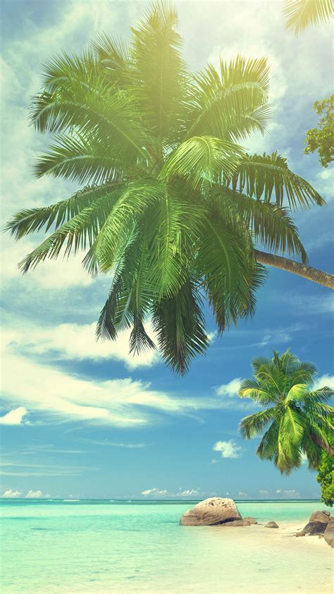summer tropical paradise wallpaper  iphone