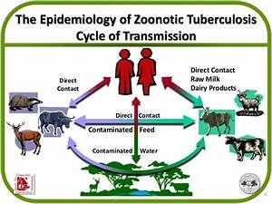 Using a One Health Approach to Control Zoonotic Diseases ...