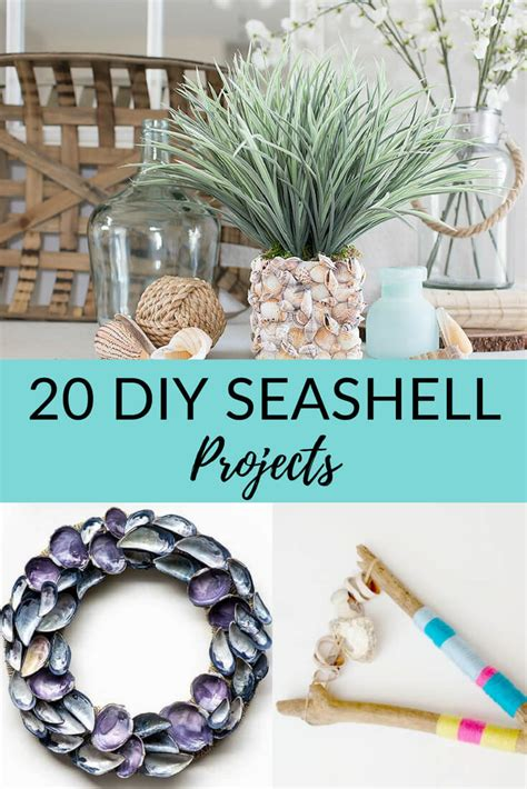20 easy diy seashell crafts coastal wandering