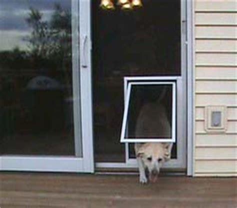 pet screen door san diego services dog door for sliding