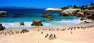 Cape Point Group Tour – Galaxyspress Travel and Tours