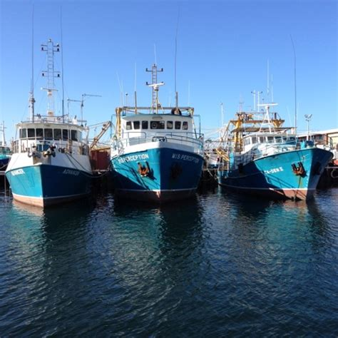 Boat Harbour Rock Fishing by Fishing Boat Harbour Fremantle