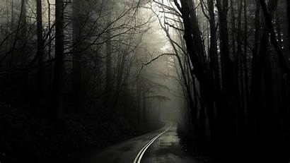 Spooky Forest Wallpapers Backgrounds