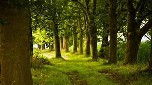 Scenery Pics images Spring and summer scenery HD wallpaper ...